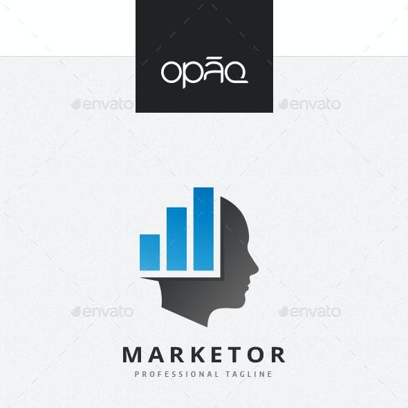 Investment Consultant Logo