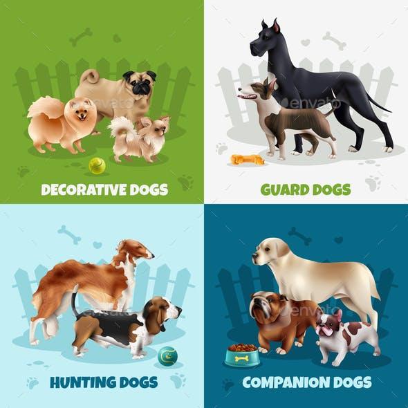 Dog Breeds Design Concept