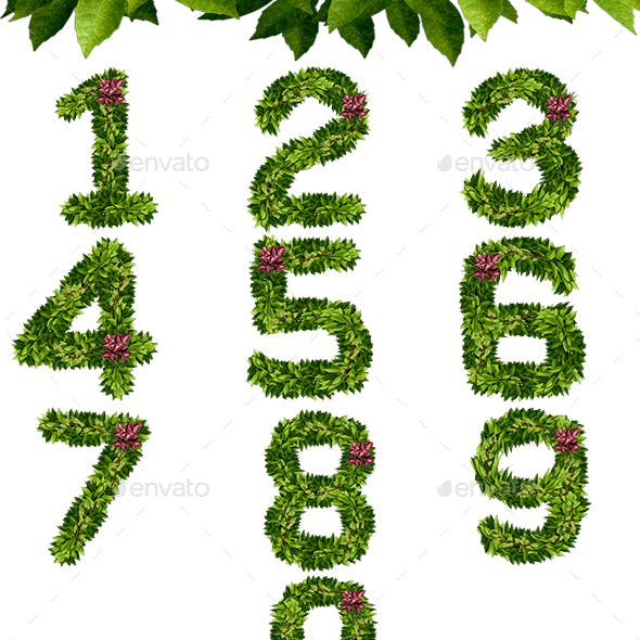 Foliage Numbers
