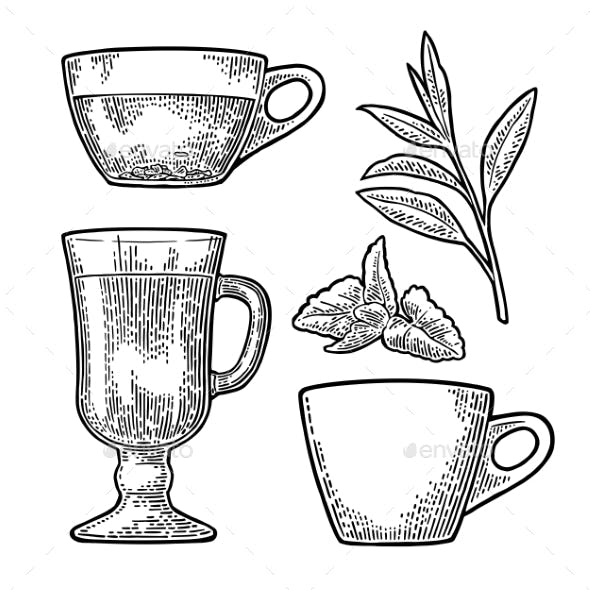 Cup Wit Tea and Branch with Leaves