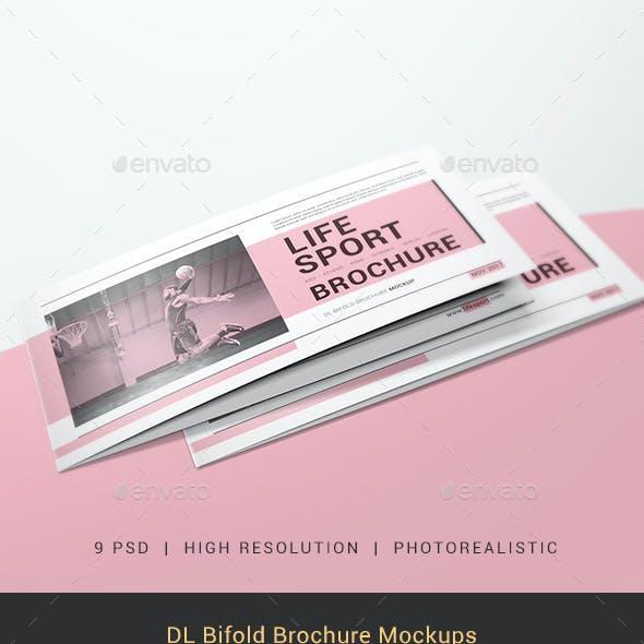 DL Bifold Brochure Mockups