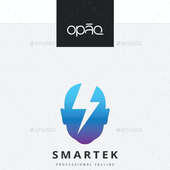 Human Smart Ideas Logo