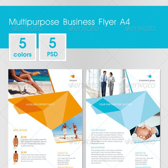 Multipurpose Business Flyer A4