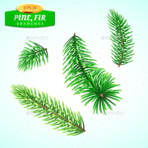 Set of Fir Branches Christmas Tree