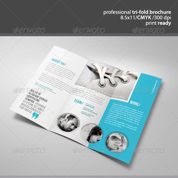 Clean Tri-Fold Brochure