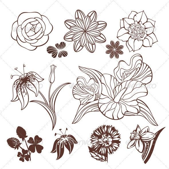 Set Of Flowers - Flowers & Plants Nature