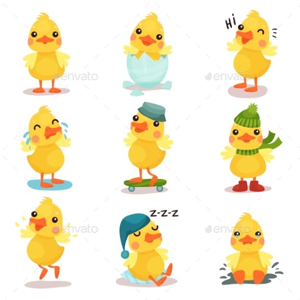 Little Yellow Duck Chick Characters Set