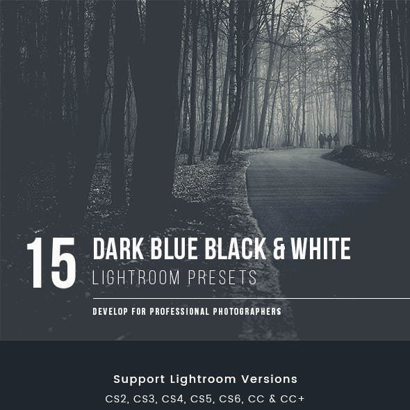 Dark Blue Black & White Presets