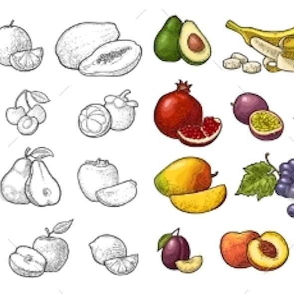 Set Tropical Fruits. Vector Black Vintage