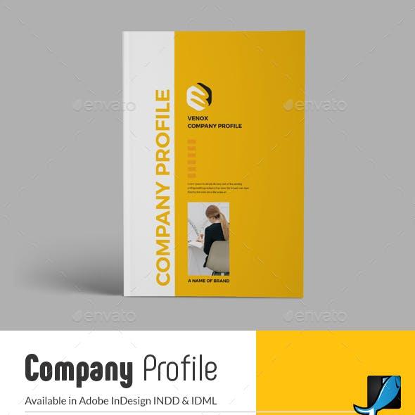 Company Profile Template Graphics, Designs & Templates