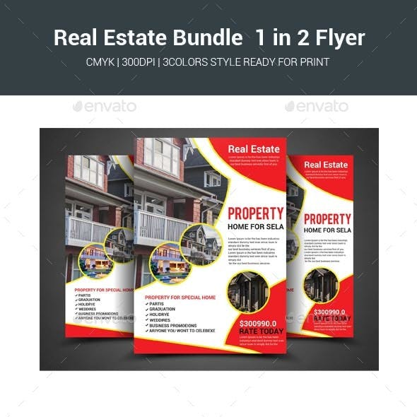 Real Estate Bundle 1 in 2 Flyer