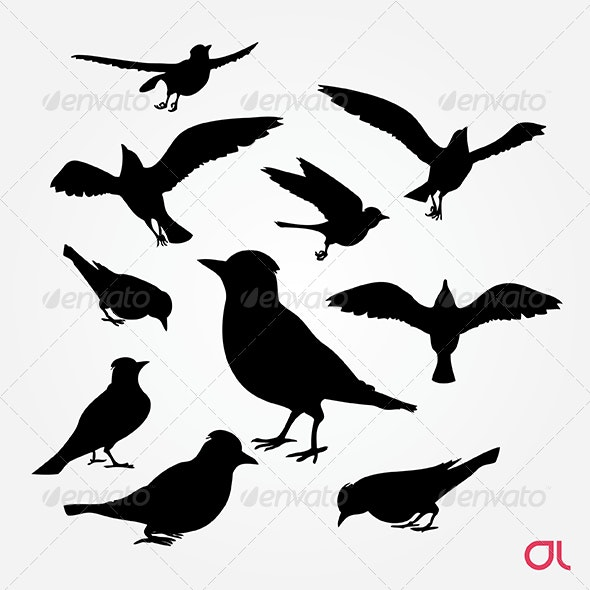 Birds: Blue Jay Silhouette Vector Set - Animals Characters