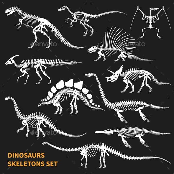 Dinosaurs Skeletons Chalkboard Icons Set