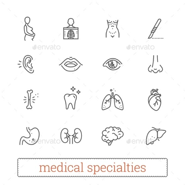Medicine Specialties, Organ Systems Linear Icons.