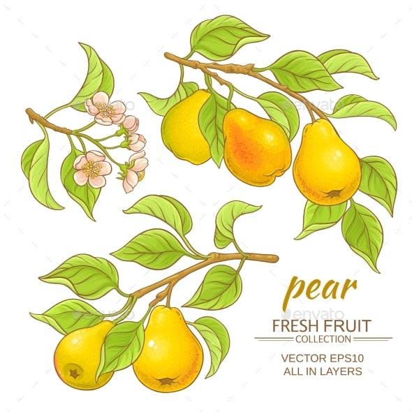 Pear Vector Set