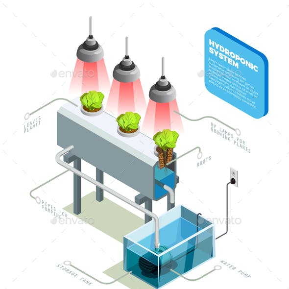 Hydroponic Graphics, Designs & Templates from GraphicRiver