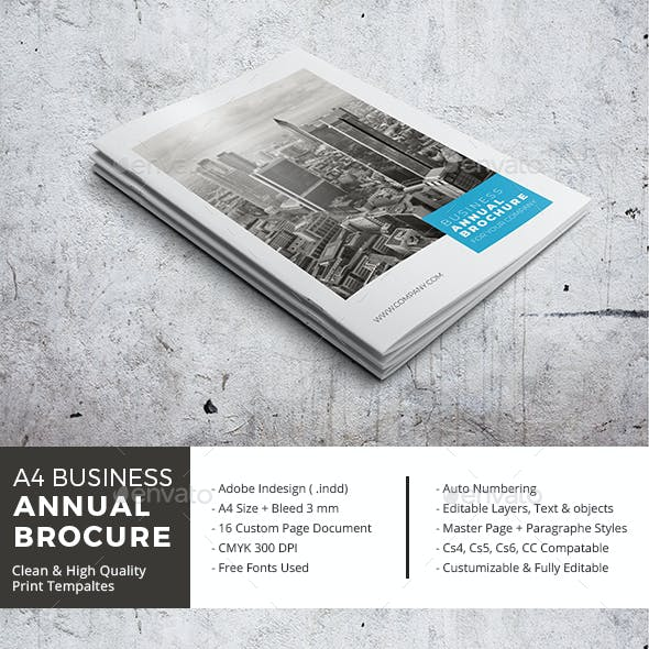 A4 Business Annual Brochure