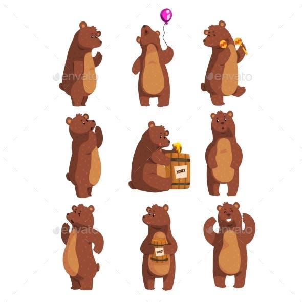 Forest Animal Bear Cartoon