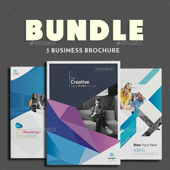 Bundle - Brochure