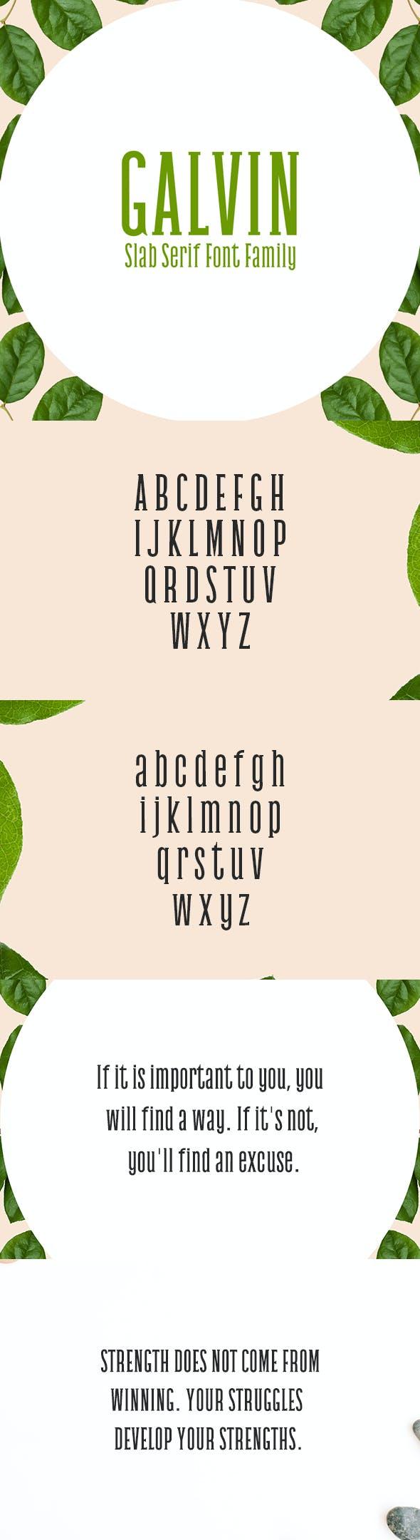 Galvin Slab Serif 5 Font Family Pack