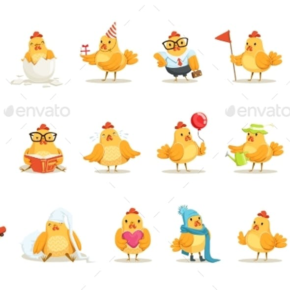 Little Yellow Chicken Chick Different Emotions
