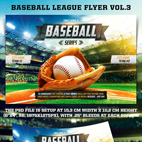 Baseball League Series Flyer vol.3