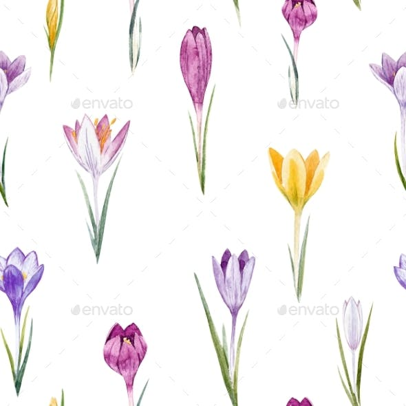 Watercolor Crocus Floral Pattern