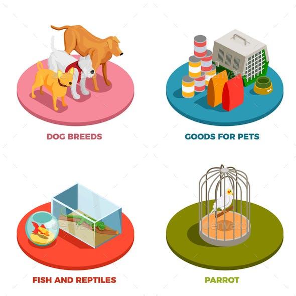 Pet Shop 2x2 Design Concept
