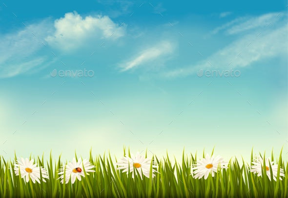 Spring Nature Background With Green Grass And Sky