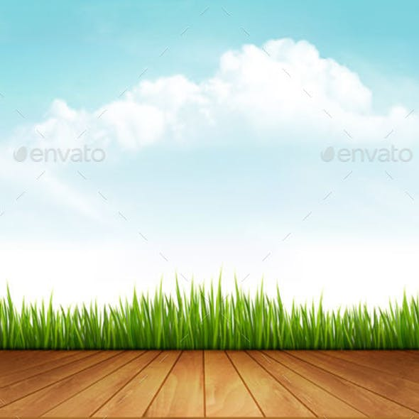 Nature Background With Green Grass And a Wooden Deck