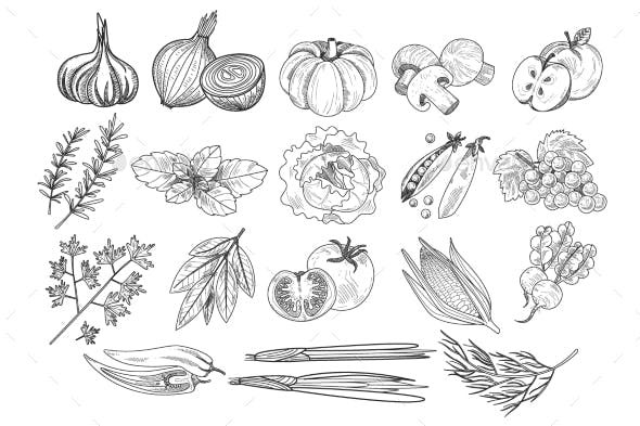 Vector Set of Fruits, Vegetables and Herbs