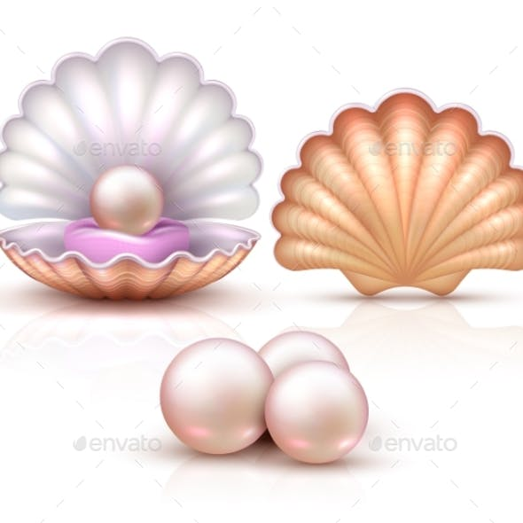 Opened and Closed Seashells with Pearls Isolated