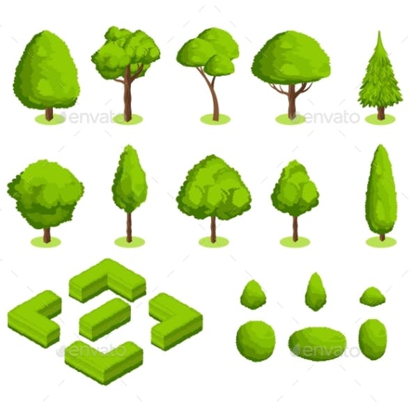 Isometric 3d Vector Park and Garden Trees