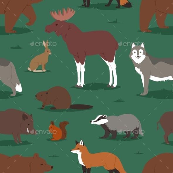 Forest Animals Vector Cartoon Animalistic