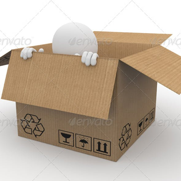 Man Hiding in a Cardboard Box