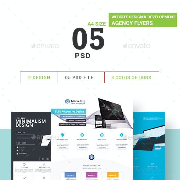 Website Design & Development Agency Flyers Bundle