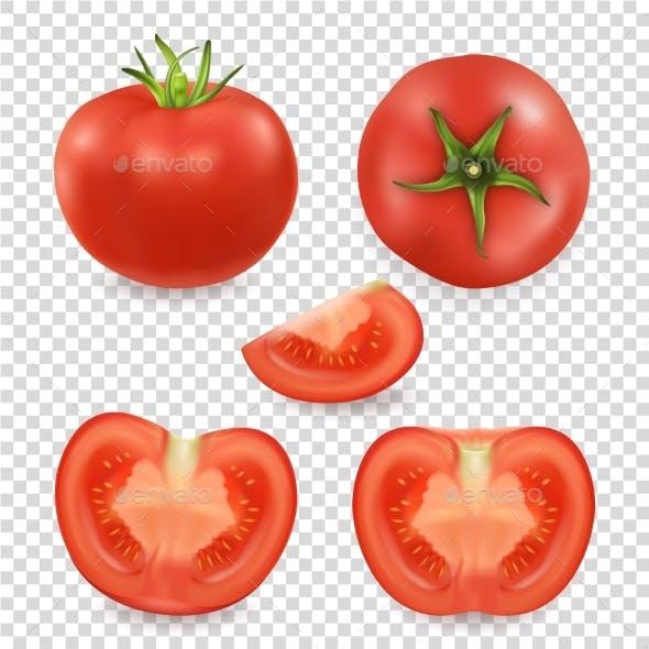 Vector 3d Realistic Different Tomato Icon Set