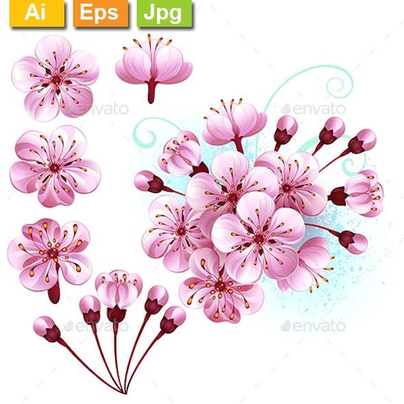 Set of Sakura Flowers