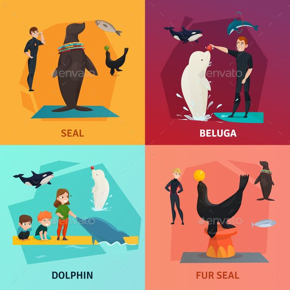 Dolphinarium Show Concept Icons Set