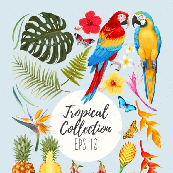 Tropical Vector Set