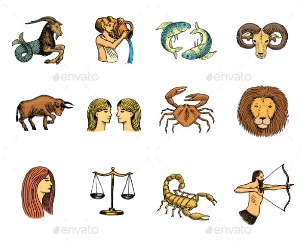 Zodiac Symbols Vector Astrology Zodiacal Signs