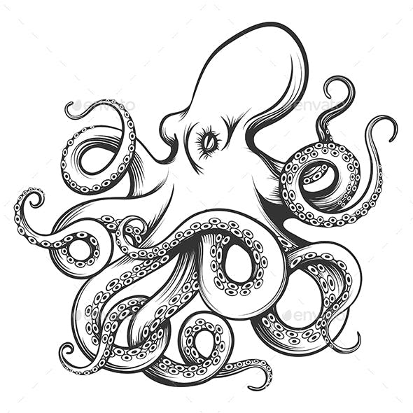 Octopus Drawn in Engraving Style