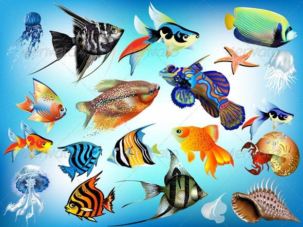 Marine animals  - Nature Conceptual