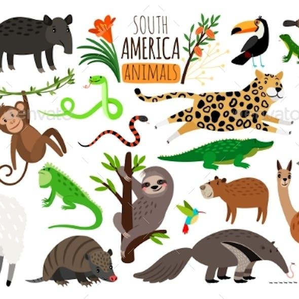 South America Animals
