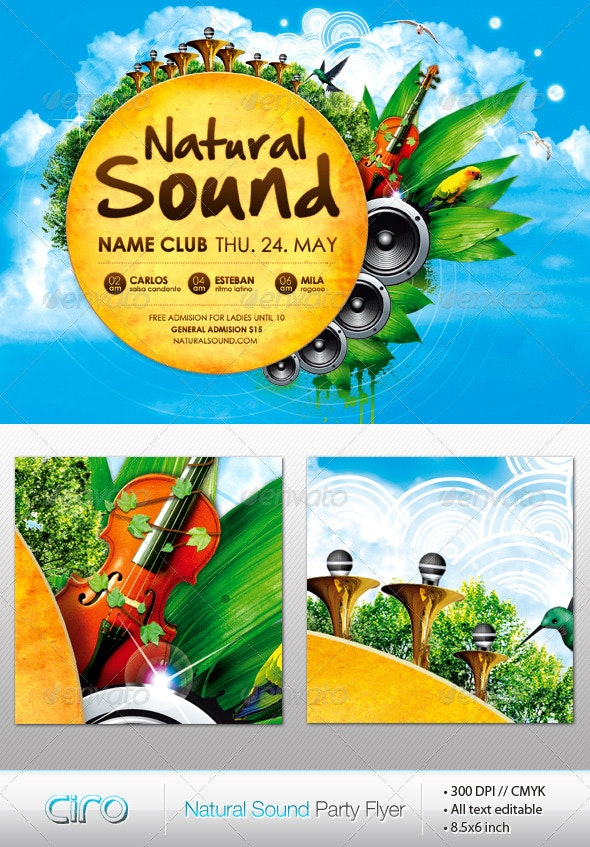 Natural Sound Party Flyer - Clubs & Parties Events