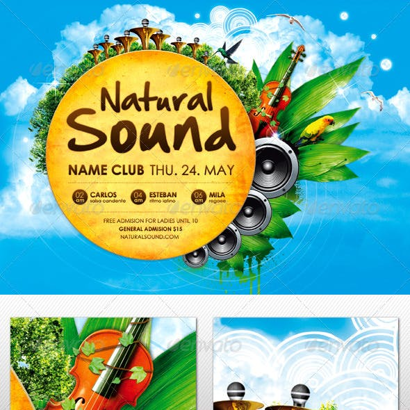 Natural Sound Party Flyer