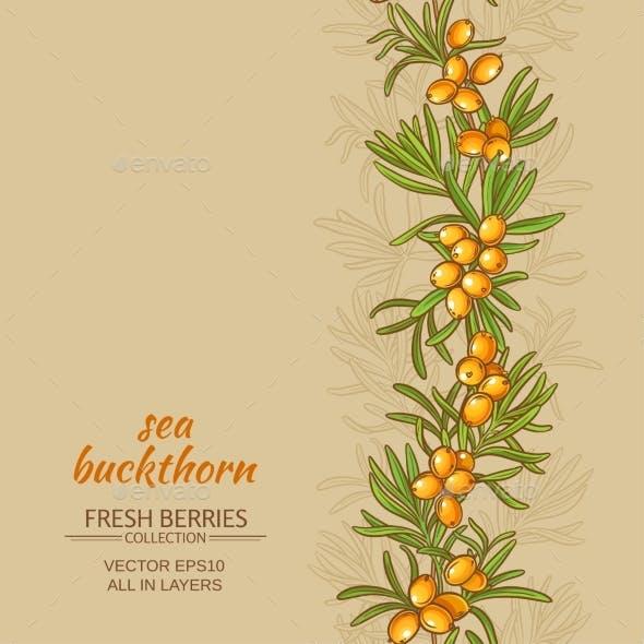 Sea Buckthorn Vector Background