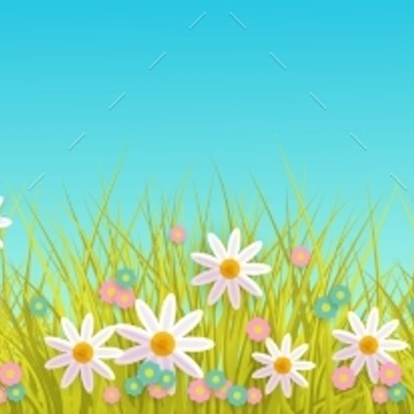 Spring Grass and Flowers Border on Blue Sky
