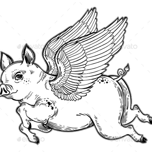 Flying Winged Pig Illustration