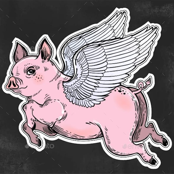 Flying Colorful Winged Pig Illustration
